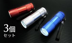 【800円】超軽量&大光量≪9灯LED懐中電灯「ライト&ブライト」 3個セット≫ ※クーポン番号発行後、別途購入手続きが必要です。
