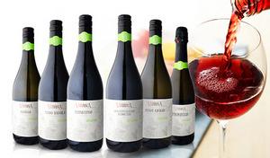【送料込み/6本セット】ICEA(イチュア)オーガニック認定済み。世界有数のワイン生産国イタリアの、赤・白・スパークリングワインセット《イタリア産オーガニックワイン6本セット》