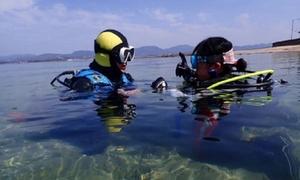 【最大77%OFF】大海の美しさと楽しさを≪ダイビング / 1日体験 or ライセンス取得コース(約4日)≫レンタル費・海洋費など込 @Scuba Diving Mahalo
