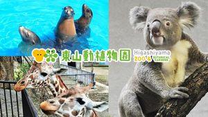 【大人】東山動植物園 観覧券が【450円】動物園、植物園、遊園地など魅力満載★動物園には約500種の動物を展示♪ご家族で、デートで♪