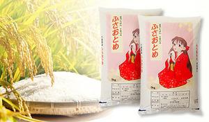 関東の米どころ・千葉県の「ふさおとめ」のセット《平成30年産 新米 千葉県産ふさおとめ 5kg×2袋/計10kg》