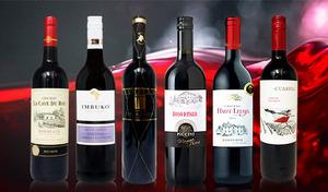 【送料込み】ワインの世界的な生産地「フランス」「イタリア」「スペイン」産に加え、「チリ」「南アフリカ」産のニューワールドワインもセットイン《成城石井直輸入 厳選・世界の赤ワイン飲み比べ6本セット》
