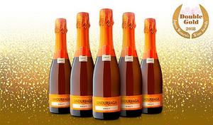 【送料込み】チリを代表する歴史あるワインメーカー「ウンドラーガ」社が贈る、爽やかな柑橘系のアロマ感あふれるスパークリング。キリッとした辛口の味わい《ウンドラーガ スパークリング ブリュット 375mL×12本》
