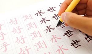 """【67%OFF/通信講座】1日わずか15分の学習で、好印象な""""美文字""""を習得を目指す。お手本のなぞり書き中心で誰にも簡単。美しい書風が身につき、一生物の財産に。 のし袋や席札などで大活躍《「新・実用筆ペン」通信教育講座》"""