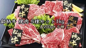 日本を代表する5大銘柄牛(松阪牛、神戸牛、近江牛、米沢牛・前沢牛)の焼肉を贅沢にセット! 『銘柄牛 焼肉 5種セット1kg 』が 送料・税込8,200円!
