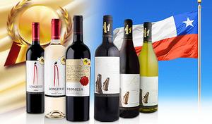【送料込み】豊かな土地が育んだ上質なブドウから造られた赤ワイン・白ワインのセット。金賞受賞の実力派を含むバランスのよい味わいのワインを飲み比べ《金賞受賞3本入りチリ産お値打ちワイン飲み比べ6本セット》