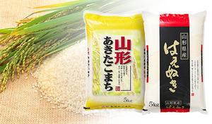 【予約販売/送料込み】お米本来のおいしさを楽しめる、選りすぐりの2種類を詰め合わせ《平成30年産 新米山形県産はえぬき&あきたこまち各5kg計10kg》風味やバランスに優れた上質なお米を食べ比べ