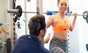 【最大79%OFF】身体を変えて人生も変えたい。計画的に理想のBODYメイク≪パーソナルトレーニング50分(食事指導付)/ 1回分 or 3回分 or 6回分≫男女利用可 @BRUSH GYM