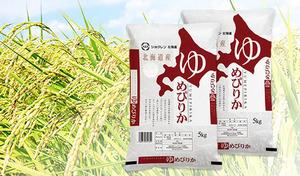 【送料込み】北海道米の集大成ともいえる、米好きに人気のブランド米をお届け《平成30年産 新米北海道産ゆめぴりか 10kg(5kg×2袋)》
