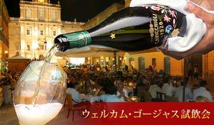 【ワイン試飲会 at 品川ピーロートラウンジ/予約不要】50種類のワインと出会える3日間の限定イベント。ボルドー、ブルゴーニュ、カリフォルニア、アイスワインなどが世界中から大集合《ウェルカム・ゴージャス試飲会》