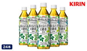【訳あり/送料込み】賞味期限短め。爽やかで清涼感あふれる新感覚の緑茶《世界のキッチンから 冴えるハーブと緑茶 500mL×24本入り》