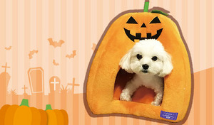 【送料込み】ペット用ベッドとしてはもちろん、愛らしい存在感でインテリアとしても活躍。シーズンムード高まるキュートなデザインで、大切な愛犬や愛猫も一緒にイベントを堪能《ハロウィンドーム》