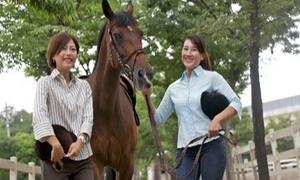 やさしい馬とふれあい、ふたご座流星群の鑑賞などイベントも体験。いつもと違った休日を≪乗馬体験+ラッテたかまつ特製チーズお土産 / 他1メニュー≫6歳以上から利用可 @乗馬クラブ クレイン奈良