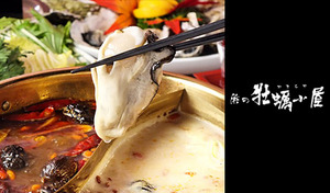 【60%OFF/4店舗から選択可/全時間帯利用可】旨みたっぷり、その日に水揚げされた生牡蠣を薬膳火鍋スープのしゃぶしゃぶで。三陸産生わかめとともに味わう中華風鍋《牡蠣のしゃぶしゃぶコース》