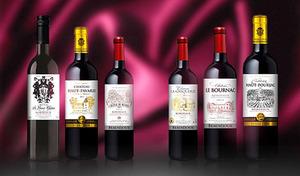【6本セット/金賞受賞ワイン3本入り】2大産地・ボルドーから生まれた、プチシャトーならではの独自性を持つ優れたワイン《ボルドー格付けプチシャトー赤ワイン6本セット》「奇跡のヴィンテージ」といわれた2015年産