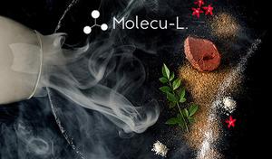 【54%OFF/食べログ3.56/120分飲み放題/メディア掲載】新感覚ガストロノミー。分子調理技術とプロジェクションマッピングが織りなす美食の世界。芸能人にファン多数《コース全9品+飲み放題+会員券》