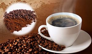 【送料込み/選べる豆or粉】老舗コーヒー卸が世界各国から厳選。自慢のブレンド4種をたっぷり飲み比べ《チモトコーヒー大入り袋入りコーヒー2kg(500g×4種)約200杯分》