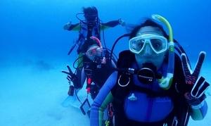 スクーバダイバーライセンスコース/2日間|男女可|Scuba Diving Mahalo|大阪市北区 天満宮駅