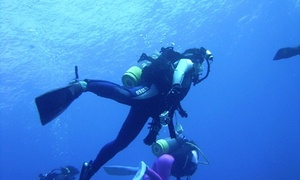 Cカードを取得して、世界の海へ≪ダイビング講習ツーリストダイバーコース(認定書付)/3日間&自宅学習≫ @BLUE WATER DIVING