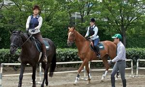 基本から始められる乗馬レッスン。ライセンスもゲット≪3日間で乗馬5級ライセンス取得コース≫ @乗馬クラブ クレイン大阪
