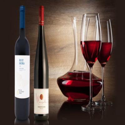 【送料込み】ぶどうの品種や気候による差など、味比べも楽しいイタリアとドイツのワインを組み合わせ。上品な果実味に交わる程よいタンニンと渋みが、食卓に華やかな魅力をプラス《イタリア・ドイツ赤2本セット》