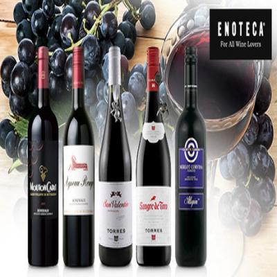 """【送料込み】ワイン専門店""""エノテカ""""が贈る、厳選した赤ワインだけのセット。世界的ワインの代表格を産地別で飲み比べ《ENOTECA厳選 フランス&イタリア&スペインのおすすめ赤だけ5本セット》"""