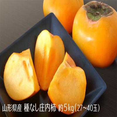 【予約受注/訳あり】種がないので食べやすい。秋の味覚の代表格《山形県産種なし庄内柿約5kg(27~40玉)》果実が甘く、舌で溶けるほど柔らかい一品