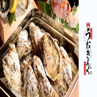 【120分飲み放題付き】敦賀湾の魚問屋から直接仕入れた新鮮魚介が自慢。牡蠣のガンガン焼き、牡蠣フライ、蒸し牡蠣など牡蠣尽くし《牡蠣ガンガン焼き食べ放題コース》