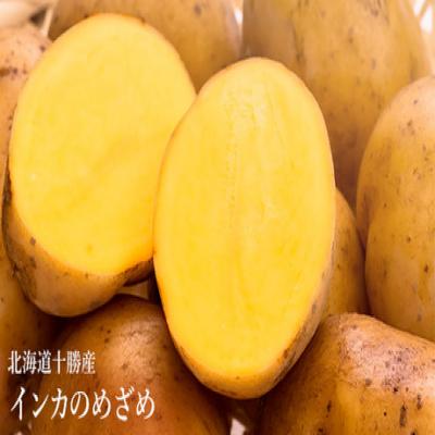 【送料込み】有名レストランでも使用される、黄金色の希少食材をご家庭で《北海道十勝産 インカのめざめ 約1kg》ホクホク濃厚・まるで栗のような甘さ