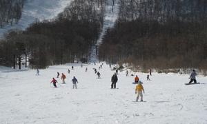 山頂からは太平洋も望める。白銀の世界で童心へ≪スキー場 1日リフト券(大人)・平日限定≫ @みやぎ蔵王白石スキー場