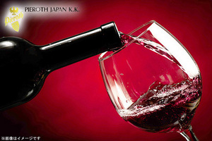 66%OFF【1,000円】≪【3/17(火)~3/19(木)まで開催】約50種類のワイン試飲!ドイツ高級ワイングラス2脚のお土産付☆/春のワインフェスティバル in相模大野≫